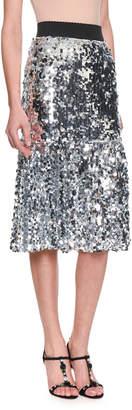 Dolce & Gabbana Elastic-Waist A-Line Paillette Embroidered Skirt