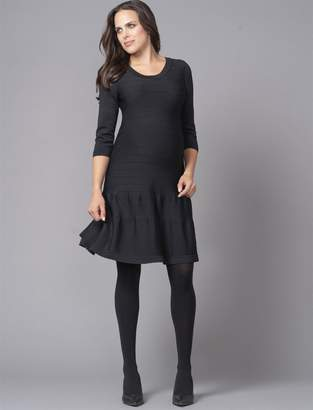 Seraphine Fit And Flare Maternity Dress