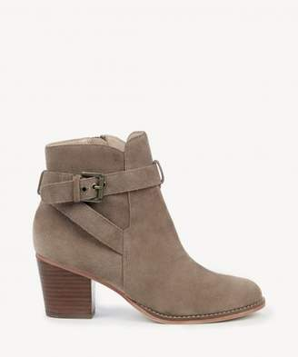 Sole Society Paislee Buckle Strap Bootie
