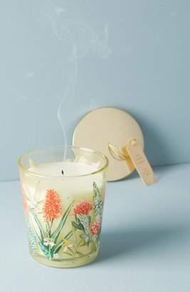 Anthropologie Spring's Eden Candle Jar