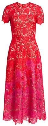 Theia Ombre Lace Short-Sleeve Tea-Length Dress
