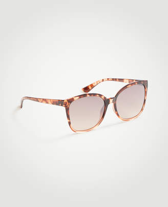 Ann Taylor Butterfly Sunglasses