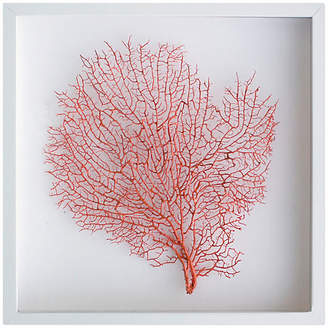 Karen Robertson Exotic Sea Fan - Orange