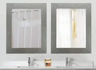 Brayden Studio Tippett Brushed Silver Wall Mirror