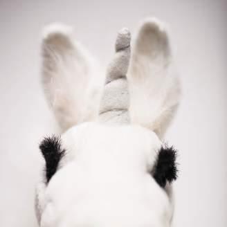 Hansa Unicorn