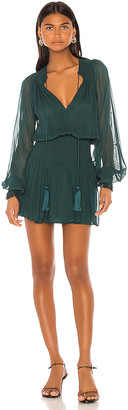 Karina Grimaldi Vintage Mini Dress