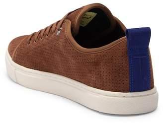 Ted Baker Kalix Suede Sneaker