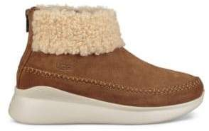 UGG Montrose Suede Sneakers
