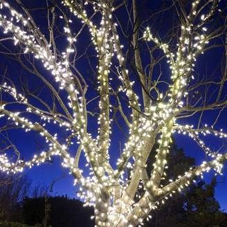 The Holiday Aisle Liteup 200 Solar String Lights