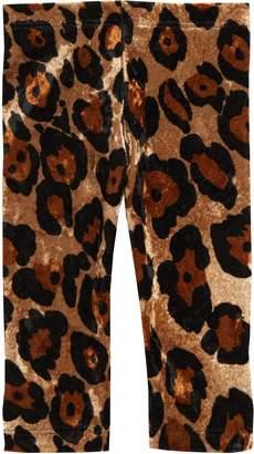 Joah Love Leopard Velvet Leggings