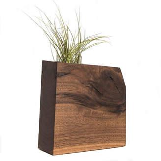 Boyce Studio Modern Wood Air Plant or Succulent Planter