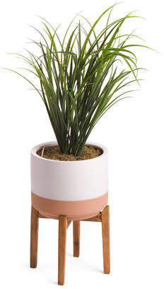 44in Grass In Terracotta Pot With Stand