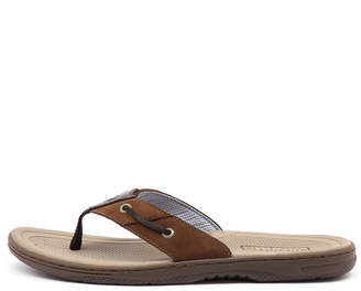 Sperry Baitfish thong Brown-buc brown Sandals Mens Shoes Casual Sandals-flat Sandals