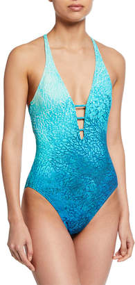 Carmen Marc Valvo Printed V-Neck One-Piece Swimsuit