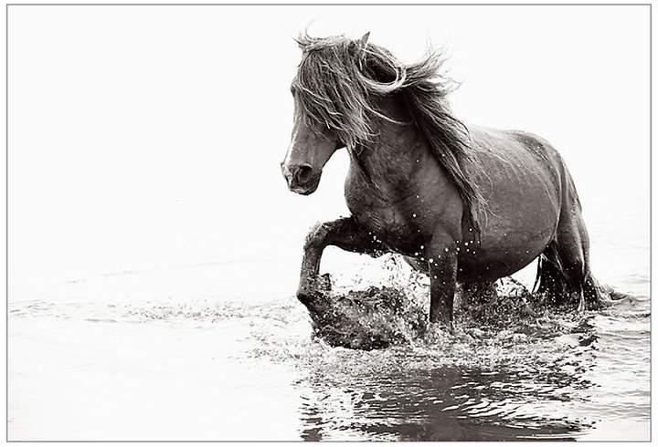 Drew Doggett - Wild Spirit image size - 32