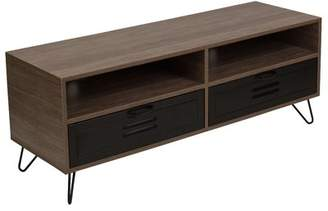 Williston Forge Coyer 47 TV Stand