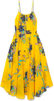 Diane von Furstenberg Floral-print Cotton And Silk-blend Gauze Maxi Dress - Marigold