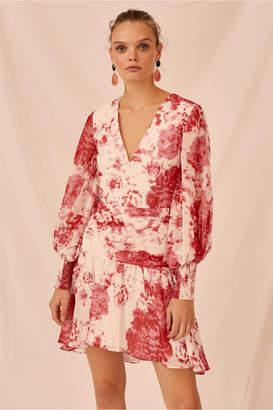 Keepsake ENCHANTED LONG SLEEVE DRESS ivory rose floral