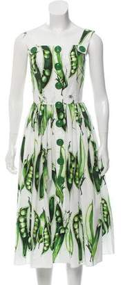 Dolce & Gabbana 2018 Pea Print Dress
