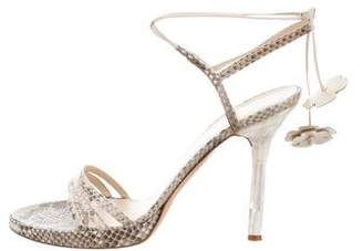 Valentino Snakeskin Lace-Up Sandals