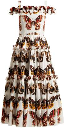 Dolce & Gabbana Butterfly-print cotton-poplin dress