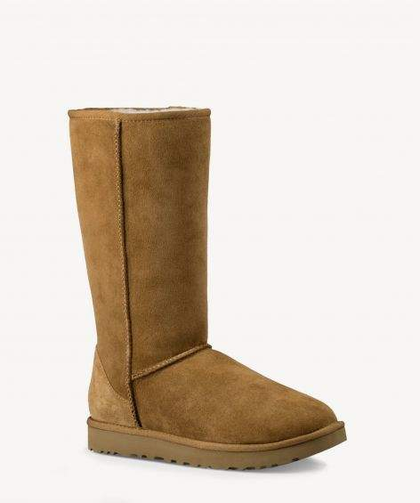 Classic Tall II Tall Suede Boot