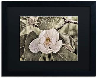 """Trademark Fine Art """"White Magnolia"""" Matted Black Framed Wall Art"""