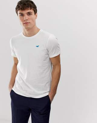 Hollister solid core crew neck t-shirt with seagull logo slim fit in white