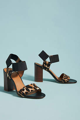 Franco Sarto Olivia Printed Heeled Sandals