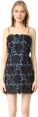 Milly Lace Mini Dress $495 thestylecure.com