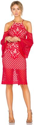 Bardot Mila Lace Dress $129 thestylecure.com