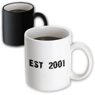 3dRose Grunge Est Established in 2001 - Baby Born in 2001 - Child of the 2000s - Personal custom birth year - Magic Transforming Mug, 11-ounce