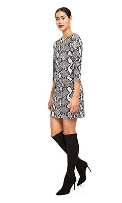 Wallis - Stone Snake Print Shift Dress