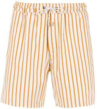 Egrey striped swimming shorts