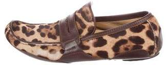 Dolce & Gabbana Leopard Print Ponyhair Driving Loafers