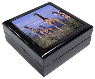 Giraffes Keepsake/Jewellery Box Christmas Gift