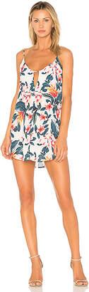 Two Arrows Moss Dress