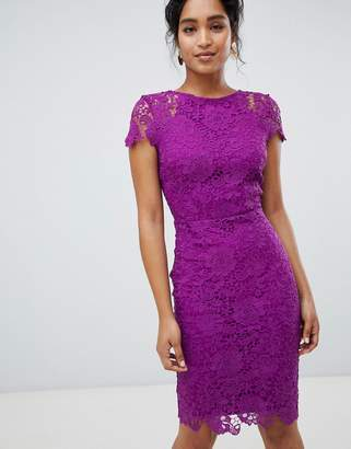 5a14490e54 Paper Dolls cap sleeve lace pencil dress in purple