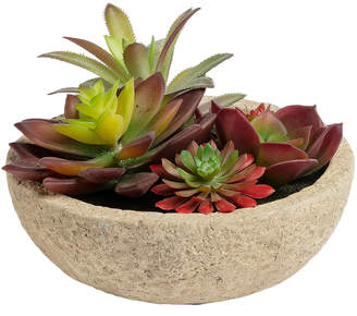 Linea Furniture 13cm Potted Faux Succulent Plant