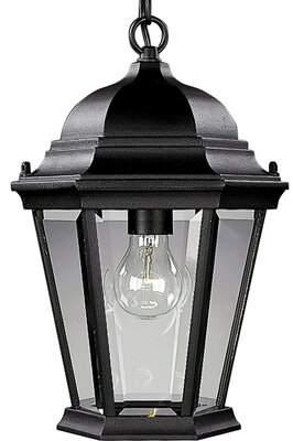 Alcott Hill Triplehorn1-Light Hanging Lantern Alcott Hill