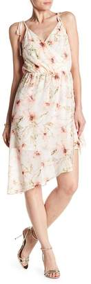 Haute Hippie The Caitlyn Floral Print Dress