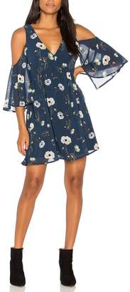 BB Dakota Blue Floral Dress