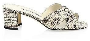Manolo Blahnik Women's Otawi Snake Sandals