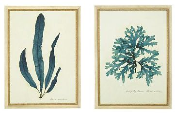 Capistrano Blue Seaweed Series, Set of 2