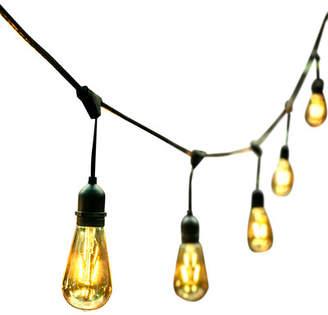 Ove Decors 24-Light 48ft Globe String Lights
