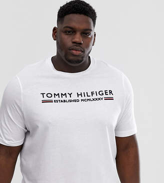 Big & Tall flock stripe logo t-shirt in white