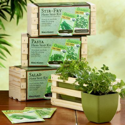 Culinary Herb Planter Seed Kits