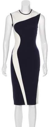 Stella McCartney Sleeveless Sheath Dress
