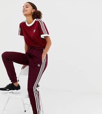 adidas Three Stripe Track Pants In Burgundy