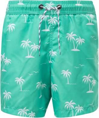 Snapper Rock Morada Palm Board Shorts